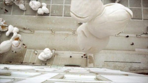 FMX Trailer 2012